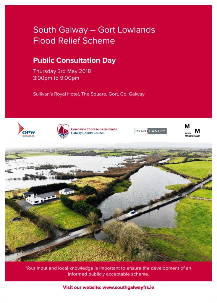 public consultation day poster